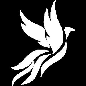 Logo Phoenix - Alexis GUICHARD